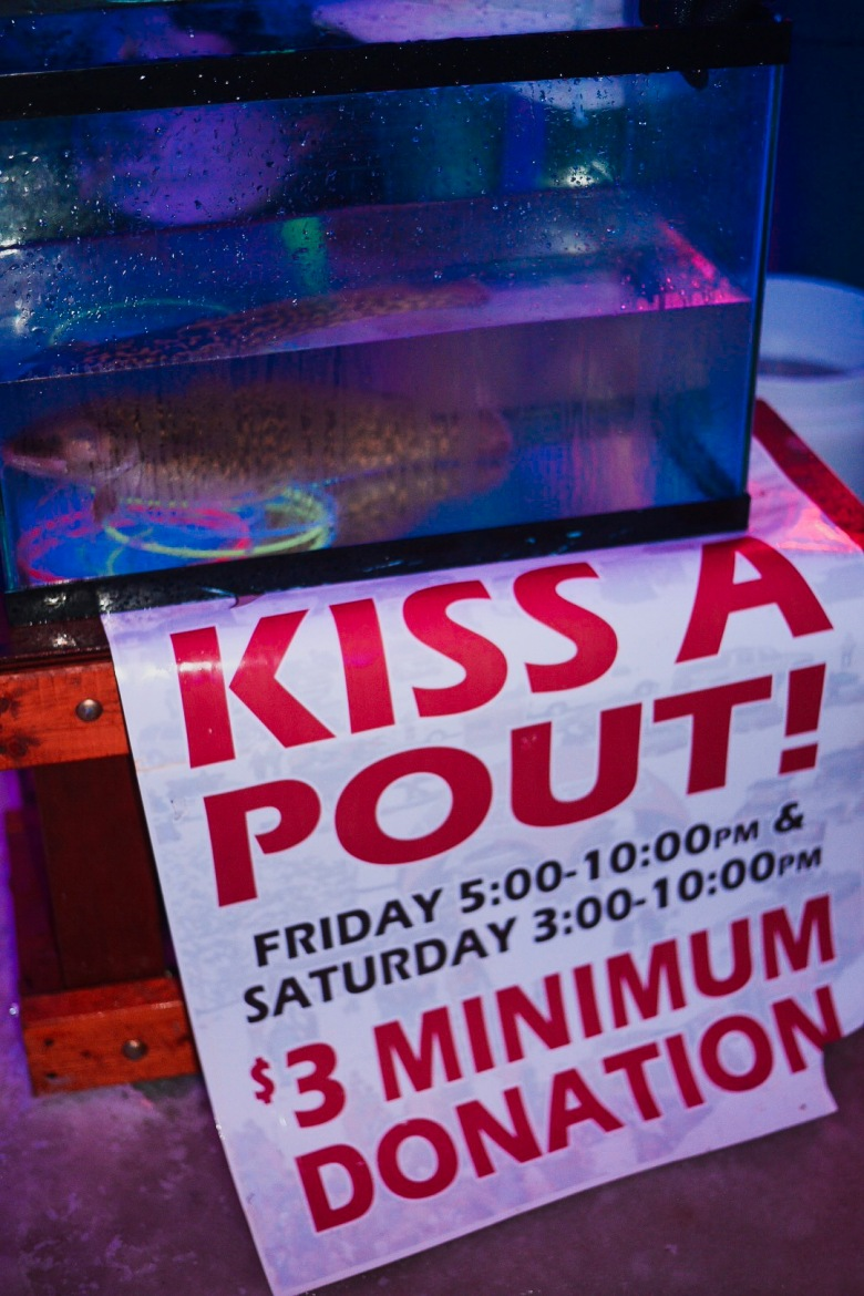 Kiss a Pout at Eelpout Festival