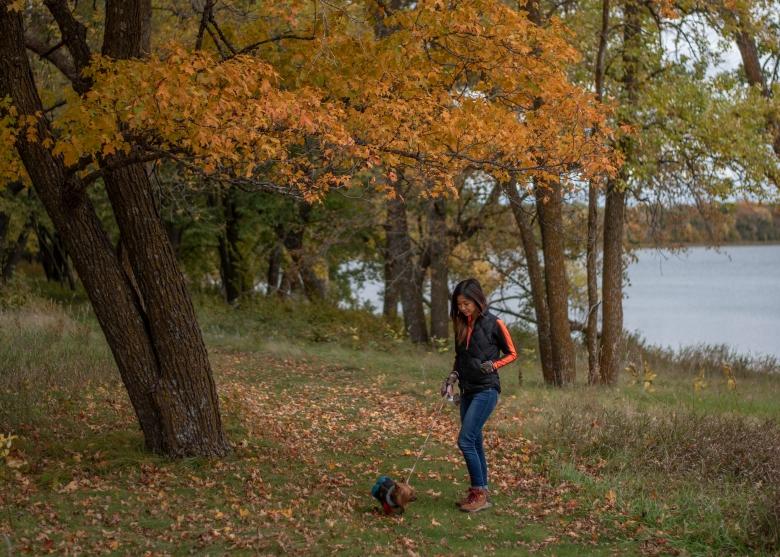 Fall colors at Glendalough State park
